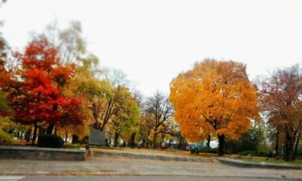 На Черкащині синоптики очікують осіннього тепла