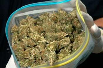 В уманчанина знайшли марихуану