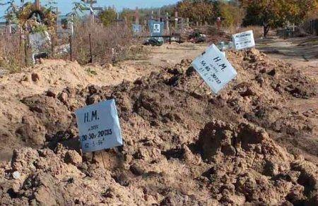 На цвинтарі у Ростові-на-Дону з'явились поховання невідомих жінок та чоловіків