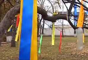 На подвір'ї 9-ої гімназії виросло дерево бажань
