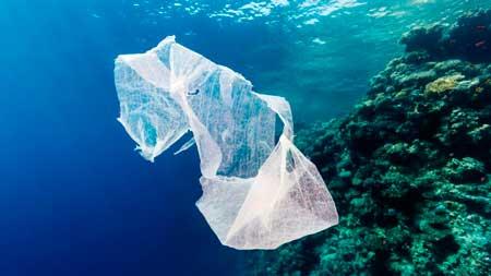 Завдяки особливим молекулам створений пластик, який екологічно розкладається