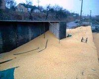 Перекинувся вже другий зерновоз за тиждень (відео)