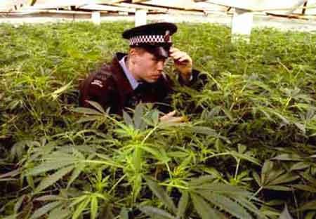 Чоловіка засуджено до 6 років позбавлення волі за збут наркотиків