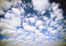 Чим дихають у Черкасах – результати аналізу повітря