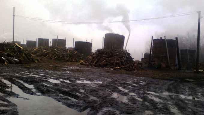 Городищенского производителя древесного угля наказали из-за жалоб граждан