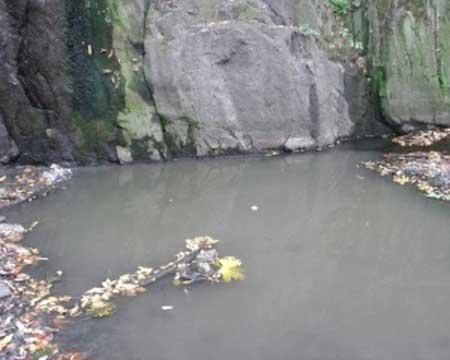 У Тальному цукровий завод отруює річку