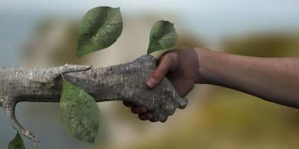 Черкаські малюки рятуватимуть собак та «зелені легені» планети