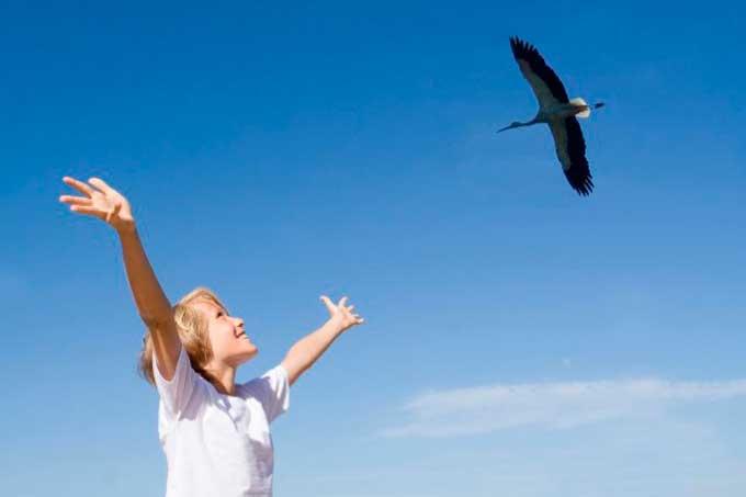 У День весняного рівнодення на Чигиринщині закликатимуть Птаху Миру