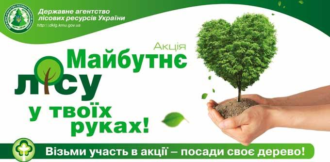 Картинки по запросу картинка«Майбутнє лісу у твоїх руках»