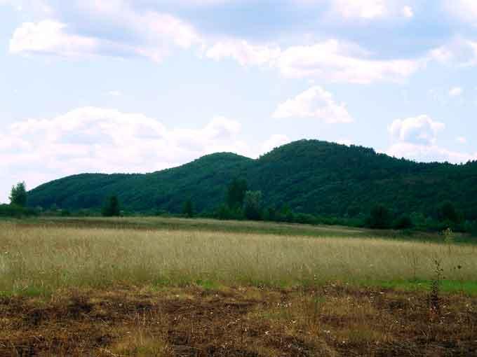 Дівича гора (гора Дівиця, с. Сахнівка, Корсунь-Шевченківський р-н)