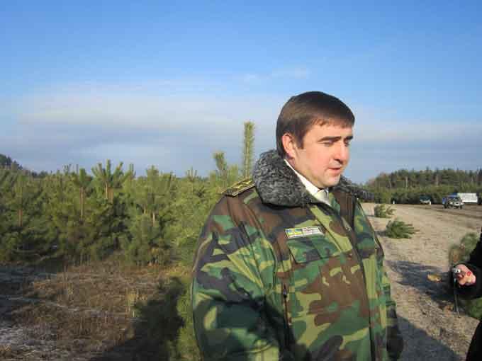 Начальник обласного управління лісового господарства вдома ставить штучну ялинку