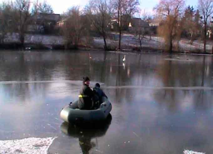 У Монастирищі співробітники ДСНС врятували лебедя
