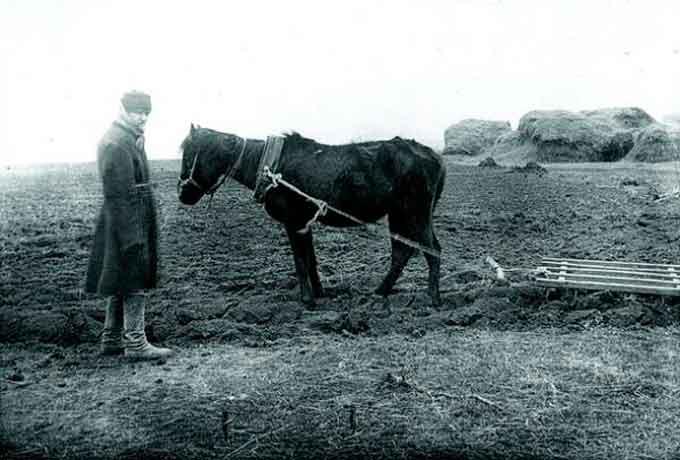 Повстання 1930 року в Драбові