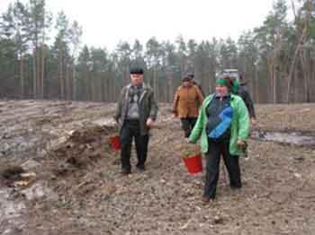 В області найбільше лісів висадять у Черкаському лісгоспі