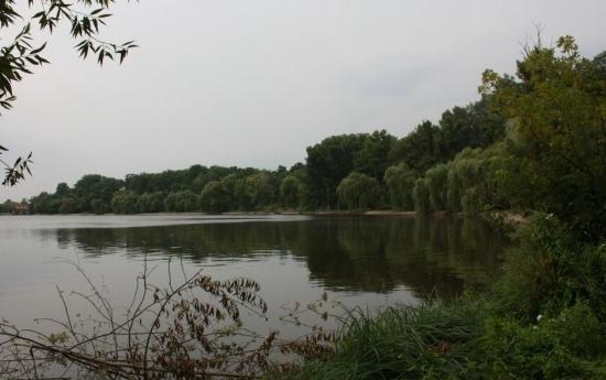 Звенигородська прокуратура взялася викорінювати «пільгову» оренду ставків