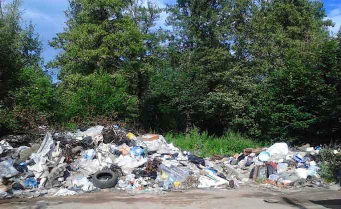 У Канівському районі невідомі забруднили землі (фото)