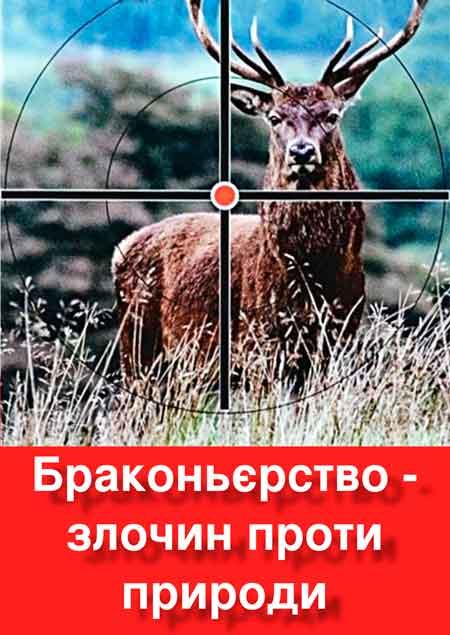 У 2016 році в лісах Черкащини зловили в 3,5 рази більше браконьєрів, ніж у минулому році