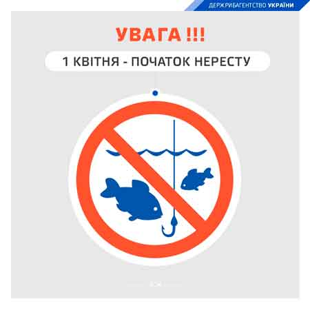 З 1 квітня у 21 області України стартує нерестова заборона на вилов риби