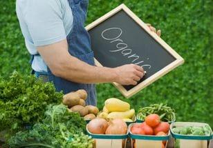 В Мельниках навчали вирощувати еко-продукти