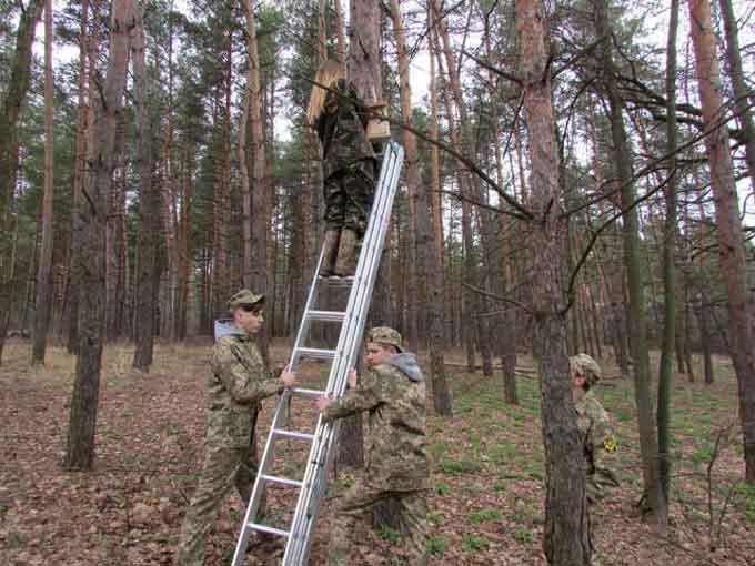 Вихованці Геронимівської школи виготовили та розвісили шпаківні в черкаських лісах