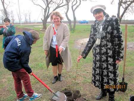 Калинову алею дружби смілянські вчителі посадили на Кіровоградщині