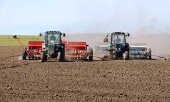 В області триває посів ярих зернових культур