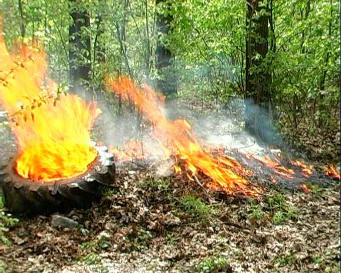 Протипожежні навчання провели у Собківському лісництві Уманського лісгоспу