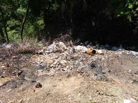 Лисянські лісівники ліквідовували сміттєзвалища на території держлісфонду