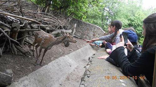 У черкаському зоопарку проводять уроки