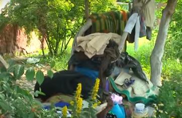 Відеорепортаж: уманчанка перетворила подвір'я на сміттєзвалище