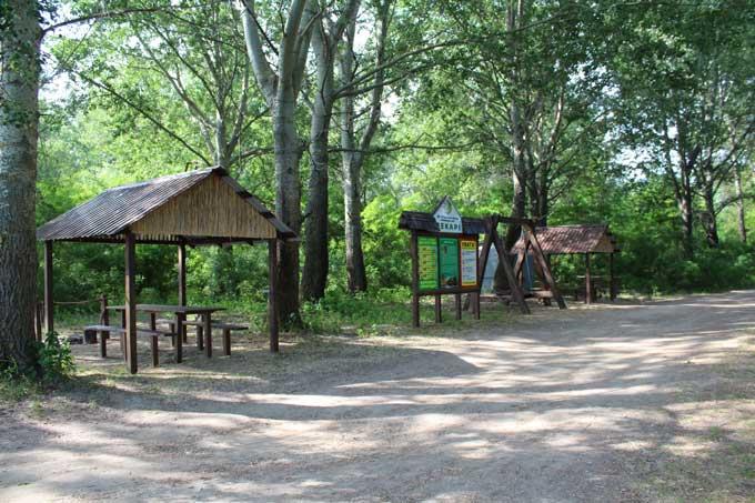 У Канівському держлісгоспі новостворений рекреаційний пункт став ще однією окрасою мальовничих місць на Дніпрі