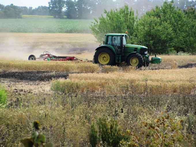 На Чорнобаївщині сільгосппідприємства не займаються пожежною безпекою