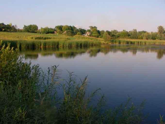 Сільські стави на Лисянщині планують почистити майже на 3 млн грн
