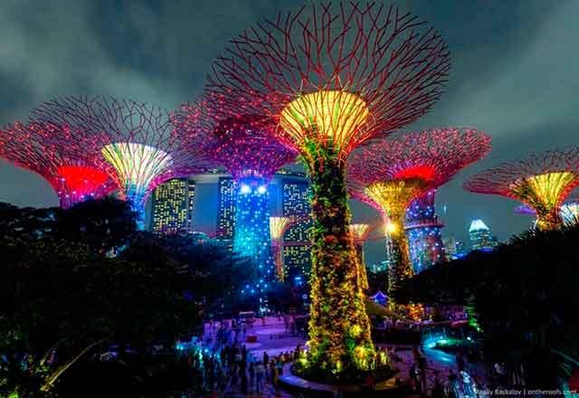 В Сінгапурі