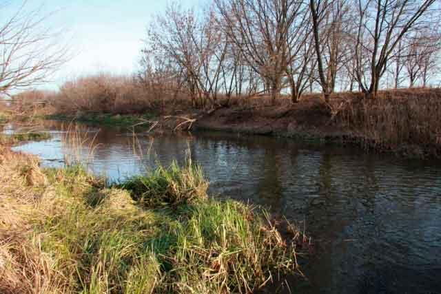 Виділено гроші на збереження річки Вільшанка