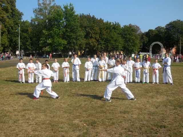 Відбувся відкритий чемпіонат міста Ватутіно з кіокушин карате