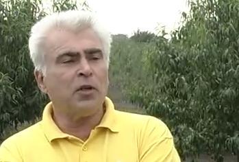 На Черкащині успішно працює «агробізнесмен з Австралії» (відео)