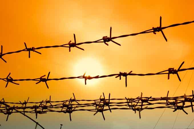 Педагоги Черкащини – жертви тоталітарного режиму