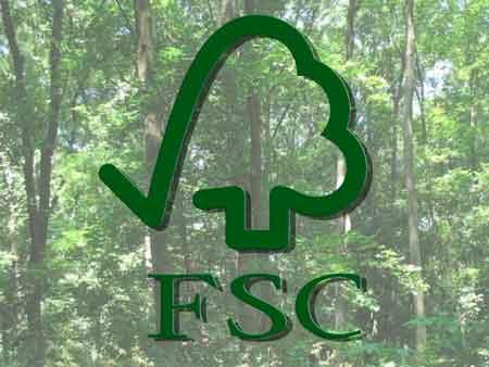 Кам'янський лісгосп отримав сертифікат FSC