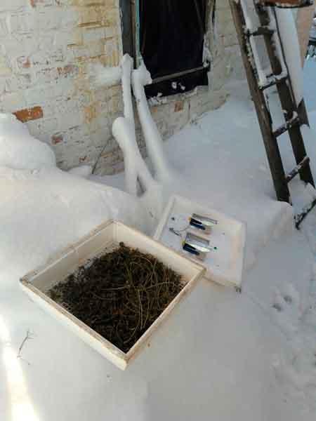 У 19-річної дівчини з Монастирищенського району в ході обшуку виявили наркотики (фото)