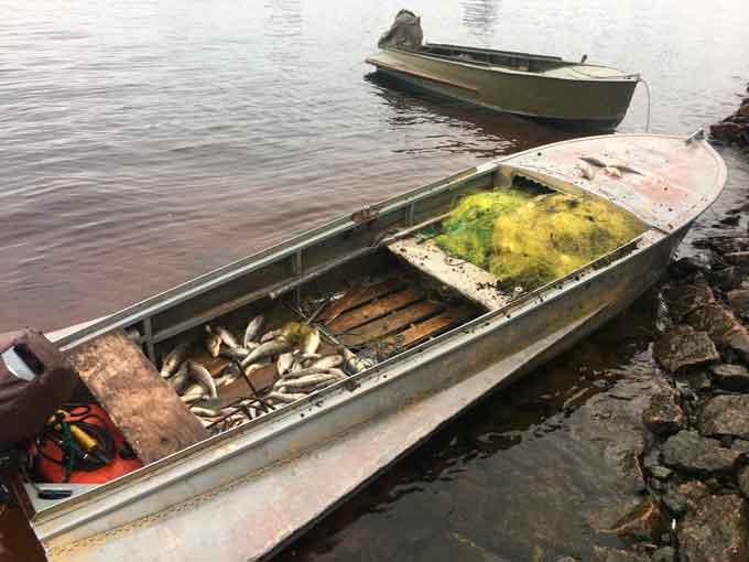 Черкаські рибалки «здали» браконьєрів рибоохоронному патрулю