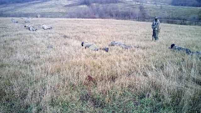 «Дике поле» проводить теоретичні та практичні заняття з основ снайперської справи для цивільних осіб та солдат Збройних Сил України з червня 2014 року. За три роки «Диким полем» підготовлено чимало діючих снайперів та інструкторів, які зараз навчають бойові підрозділи ЗСУ.