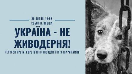 У Черкасах пройшла Всеукраїнська акція «Україна – не живодерня!»