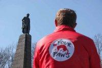 Міжнародна благодійна організація «Чотири лапи» знову прибула до Канева -  вирішувати проблему безпритульних тварин