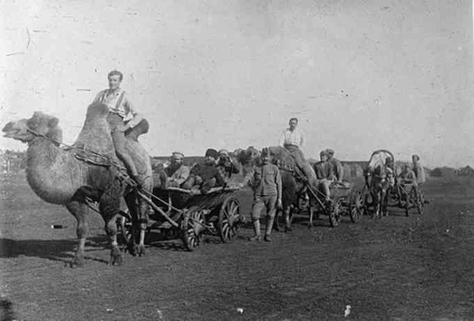 Одного погожого дня, 105 років назад, мешканці міста Черкаси з подивом спостерігали неймовірну картину: до міста прямував караван справжнісіньких верблюдів