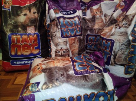 До Всесвітнього дня тварин безпритульні котики і собачки Черкащини отримали подарунків на 20 тисяч гривень