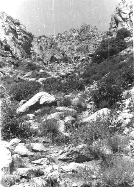 Кам'яні брили
