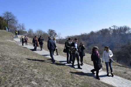 Кам'янська ОТГ: найдовша алея сакур, «сонячне» поле за 35 мільйонів євро та відкритий пункт для вирішення проблем бездомних тварин