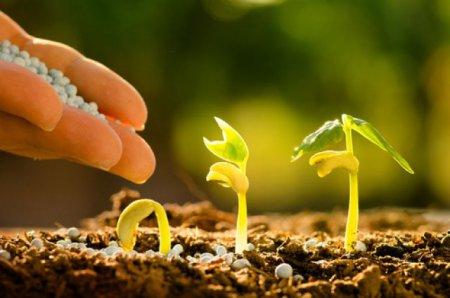 Добрива та засоби захисту рослин, вироблені в Черкасах, почали продавати в Інтернет