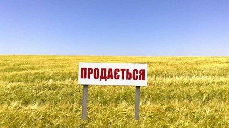 Голова Регіональної Ради підприємців Черкащини Олександр Турченяк: Україні терміново потрібен іпотечний банк